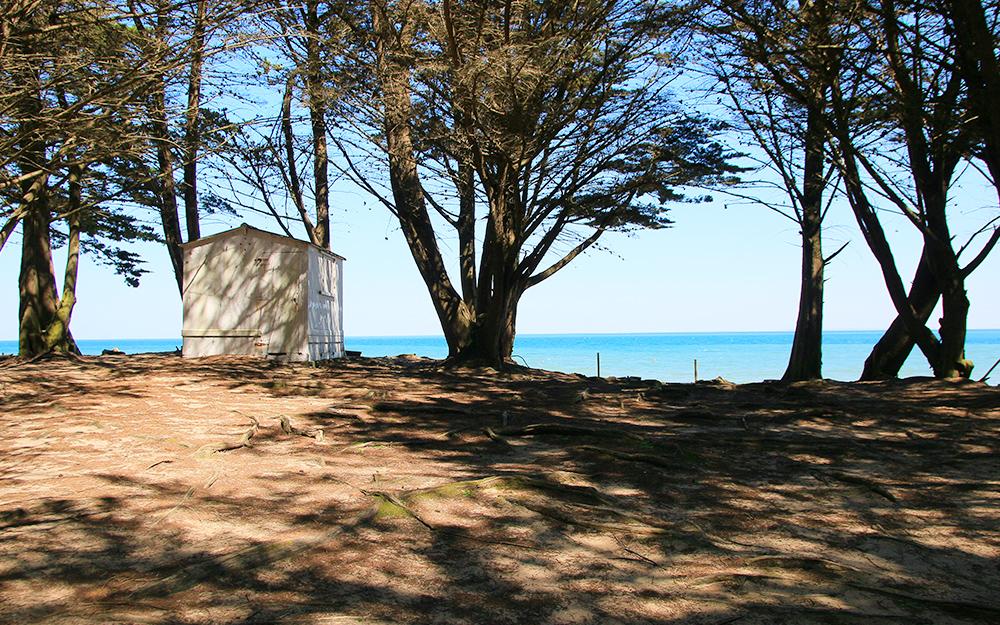 L'Île de Noirmoutier, Le Bois de la Chaise