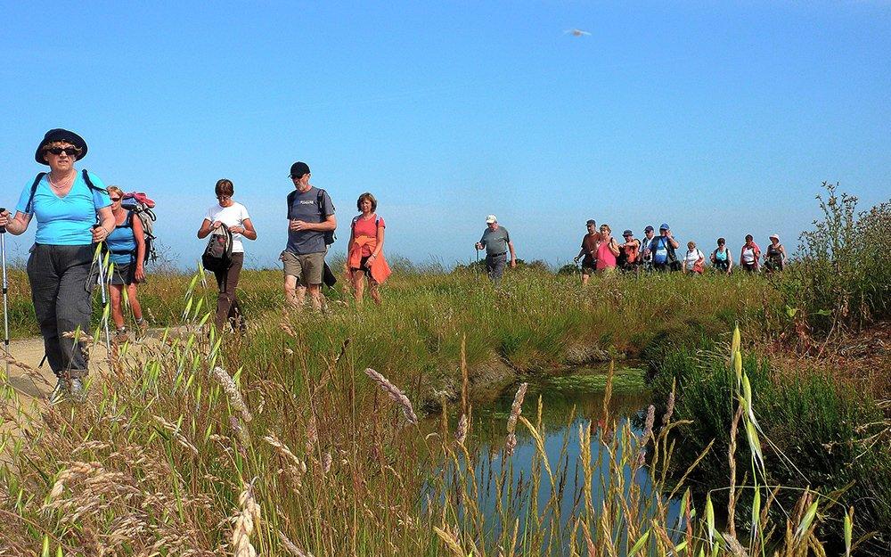 Randonneurs dans les marais Vendéen